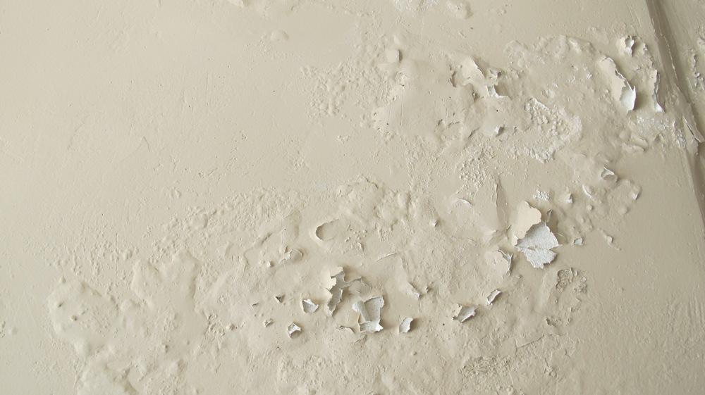 Moisture And Mold On Exterior Walls Thrakon
